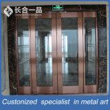 Entrée principale de haute qualité Porte en métal et verre trempé
