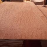 madera contrachapada tropical de la madera dura de 1250*2500m m