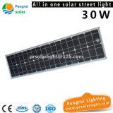 30W risparmio di energia tutto in una lampada di via solare Integrated