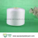 Filato 40s/2 della fibra di graffetta di poliestere del Virgin poli 100%