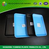 Пластичный устранимый поднос замороженных продуктов