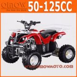 China 50cc - 110cc al por mayor Mini Quad