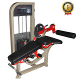 Prone Leg Curl Equipment for Commercial Fitness