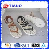Скрещивание красивейших женщин над плоскими сандалиями (TNK50035)