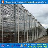 De Serre van Polycarebonate van de Serre van het PC- Blad voor het Groeien Agricutdural