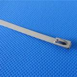 Fabriek 4.6*350mm van China Grootte van de Band van de Kabel van het Roestvrij staal van de Bal de Zelfsluitende
