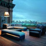 De openlucht Rotan van het Balkon van het Dak van het Meubilair van de Pool van de Tuin/Rieten het Liggen van de Zitkamer van de Ligstoel Bed Daybed Sunbed