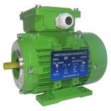Marco trifásico certificado Ce del arrabio 2008 de la ISO 9001 del motor de CA del motor eléctrico