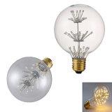 Edison LED 필라멘트 전구 G80 2W E27