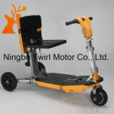 Motorino elettrico del triciclo pieghevole astuto trasformabile
