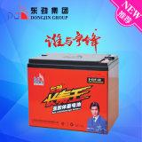 batterie chaude de véhicule électrique de la vente 6-Evf-50 (12V50AH) avec l'expédition de sûreté
