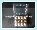 China-Plastikwachtel-Ei-Tellersegment-Hersteller