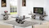 Wohnzimmer-Möbel Fernsehapparat-Standplatz-Tisch der Edelstahl-Möbel-Sj916 moderner