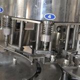 Usine remplissante de mise en bouteilles de l'eau minérale
