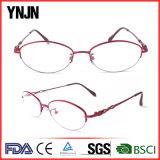 Эллипсис Eyewear половинной рамки повелительниц рамки металла Ynjn