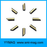 Magnete della terra rara dei magneti del disco del neodimio