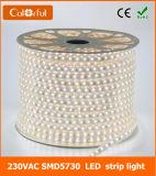 Tira blanca del alto voltaje AC220V SMD5730 LED de la hora solar ultra brillante