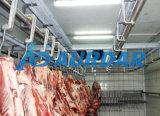 Sitio de almacenaje de congelador para la carne con resistencia de fuego