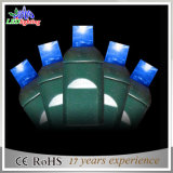 Lumières extérieures de chaîne de caractères de décoration de l'UL M5 DEL de qualité