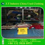 Frauen-Winter kleidet Dame-Strickjacke-Exporteur Malaysia mit Klasseen-Qualität
