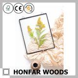 Blocco per grafici acrilico dell'esemplare della pianta del blocco per grafici di legno rustico per la decorazione