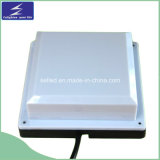 LED Square Point Flash Light AC 220V/gelijkstroom 24V