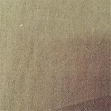 21s impermeabilizzano il tessuto normale del nylon del cotone