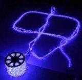 Lumière de bande de l'éclairage LED 110/230V SMD 5050 ETL DEL