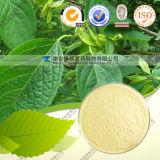 Chlorogenic Zuur 98% van het Uittreksel van Ulmoides van Eucommia