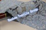 Nylonhäkelarbeit-Spitze des heißen Verkaufs-2016 für Kleid-Spitze