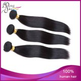 7A Silk Stright Cheap Vigin Remy Human Hair Weft