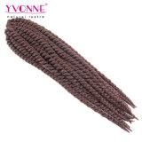 크로셰 뜨개질은 합성 머리 연장을 땋는다
