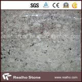 De exotische Witte Plak van het Graniet van Bianco Antactico van de Steen van Brazilië