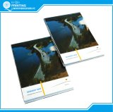 Impression polychrome bon marché de livrets explicatifs de brochure