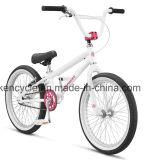 20 인치 안녕 10 프레임 BMX 자전거 Bicicleta/먼지 점프 BMX/Sy-Fs2095