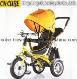 O passeante de bebê da qualidade superior caçoa o triciclo, melhor que vende o triciclo de crianças