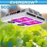 560W le large spectre DEL élèvent des lumières pour les systèmes hydroponiques élèvent des lampes du cadre DEL