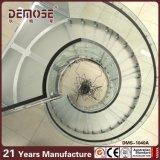 De gebogen Spiraalvormige Trap van de Omheining van het Glas (dms-1040)