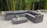 Rattan del PE & mobilia dell'alluminio, sofà esterno del rattan (SCWB0015-654)