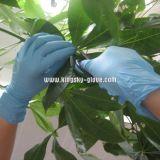 Рассмотрение Gloves-5912 устранимых перчаток порошка нитрила свободно