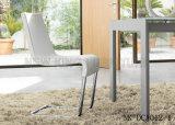 späteste europäische Art-neues rostfreies Feld, das den Stuhl modern (NK-DCA008-1, speist)