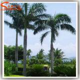 Palmeira artificial do coco do vidro de fibra da decoração do jardim