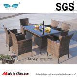 정원 Furniture Rattan 또는 Rattan Furniture Set (ES-OL047)