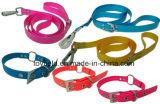 De Halsband van het Product van het Lood van de Leiband van de Levering van het huisdier