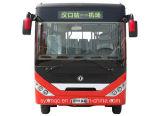10-21 autobús accionado Battary eléctrico del coche del autobús eléctrico de los asientos