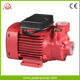 Auto-Priming Water Pump di dB 0.75HP Electric High Pressure Pump Micro Vortex