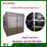 6 Bodysのための装置の中国の医学の低温学製造の埋葬のフリーザー