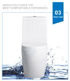 Weidansi en céramique lavent vers le bas la toilette d'une seule pièce de courroie (WDS-T6102)
