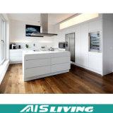판매 (AIS-K010)를 위한 간단한 현대 저장 부엌 찬장 가구