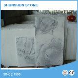 Mattonelle di marmo bianche di paesaggio piacevole per la parete e la pavimentazione